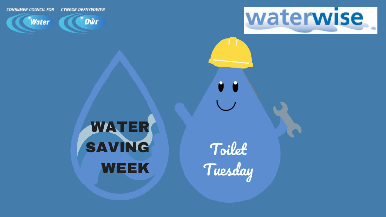 Flush with ideas to save this Water Saving Wee